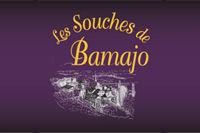 logo-LesSouchesBamajo.jpg