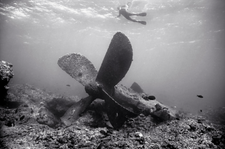Propellor of the Liberty Ship Quartet, Pearl and Hermes Reef (NWU-75)