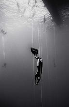 Guillaume Nery Freediving (B-80)
