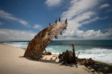 Booby Birds on Remains of Ship Wreck, Laysan (NWA-12)