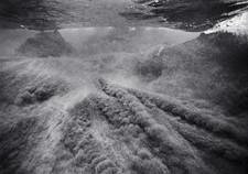 Sand Waves (O-616)