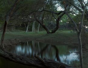 Sacred Pond, Hikeau Heiau, Hawaii, 1993 (H-10)