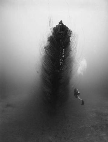 Bow, Submarine Apogon (K-06)