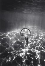 Jellyfish over Sand (SC-232)