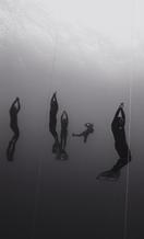 Surfacing Freedivers (B-83)