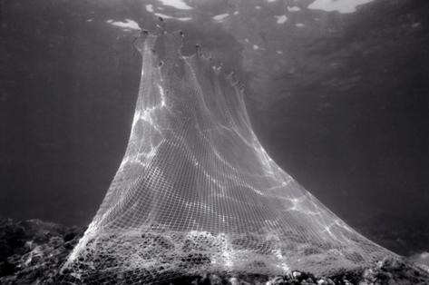 Fish Net Pyramid (F-09)