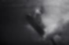 Screen Shot 2020-05-03 at 3.29.22 PM.png