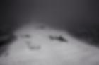 Screen Shot 2020-05-03 at 4.13.26 PM.png