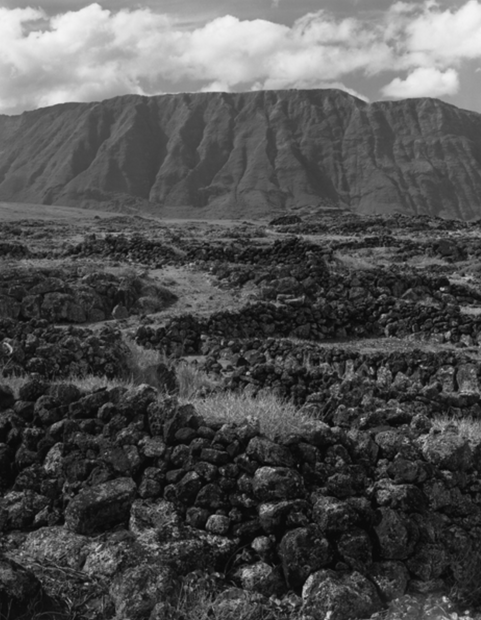 Ancient Stone Walls Makanalua, Kalaupapa, Hawaii, 198 (KAL-47)