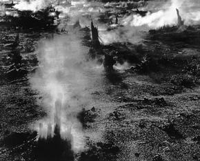 Steam Venting through Tree Stumps, Volcano, Hawaii, 1975 (LD-02)