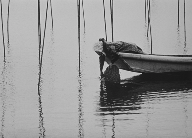 Gathering Seaweed Net, Japan, 1970 (J-024)