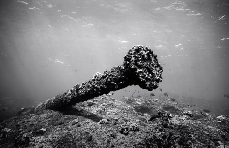 Debris from the Wreck of the Quartet, Pearl and Hermes Reef (NWU-76)