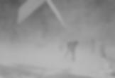 Screen Shot 2020-07-05 at 12.50.30 PM.pn