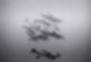 Screen Shot 2020-05-03 at 3.27.27 PM.png