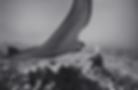 Screen Shot 2020-02-02 at 10.38.36 PM.pn