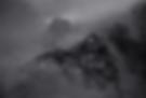 Screen Shot 2020-03-01 at 9.48.31 PM.png