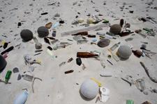 Debris on Windward Beach, Kure (NWA-22)