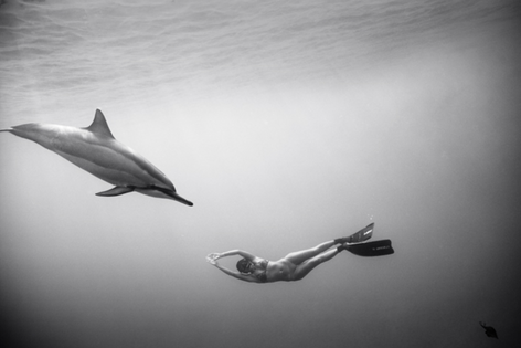 Kimi Werner with Dolphins #4 (B-342)