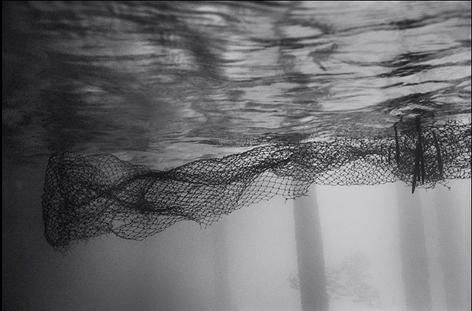 Net under Pier (K-162)