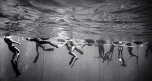 Freediving Competition (B-207)