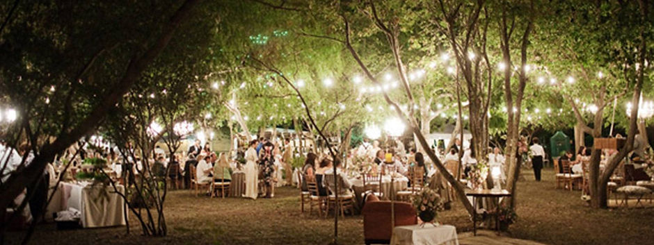Outdoor-Party-Lighting.jpg