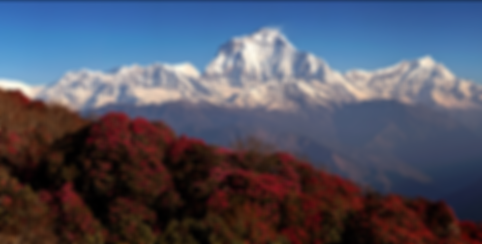 Poon Hill.png