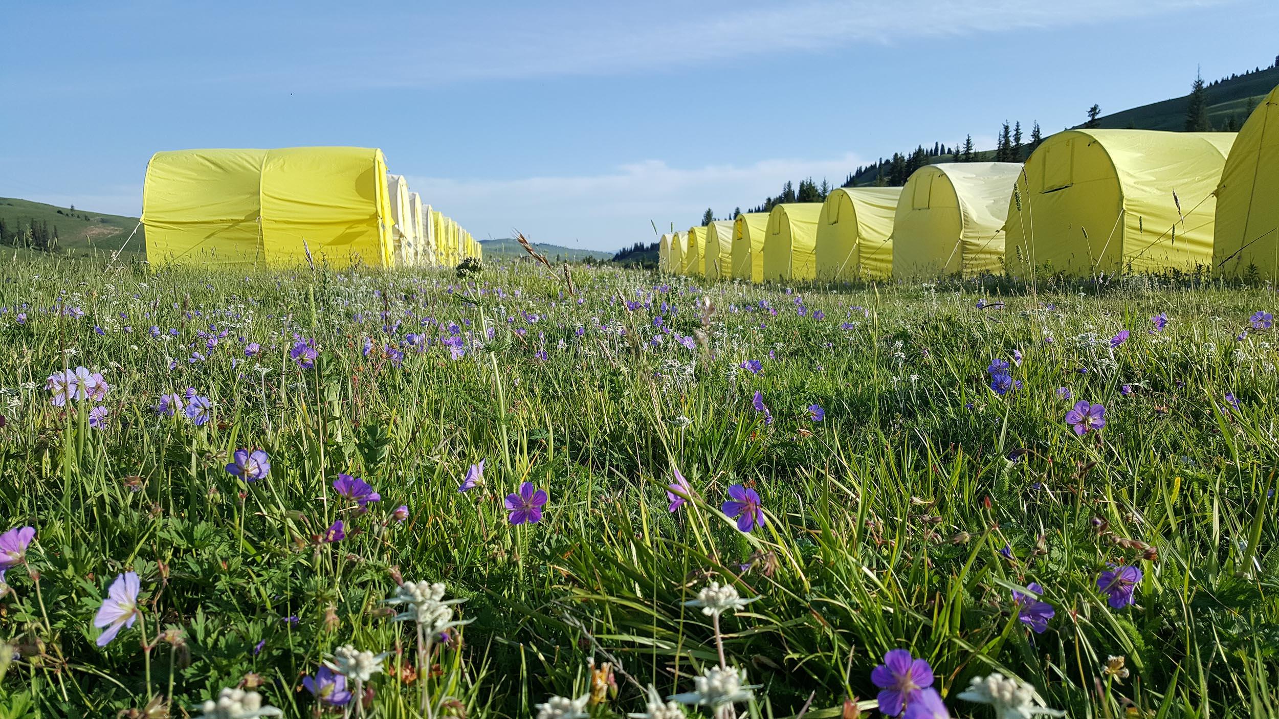 Karkara Camp