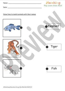 Animals Name - 4