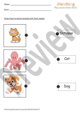 Animals Name - 3