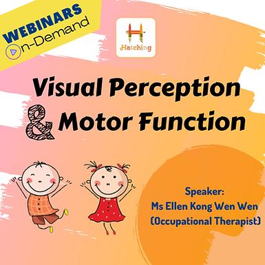 Visual Perception & Motor Function