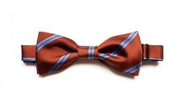 Fox pre tied silk bow tie for men
