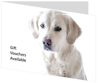 Gift Voucher Forever photos.jpg
