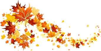 Fall_Leaves_Transparent_Picture.png