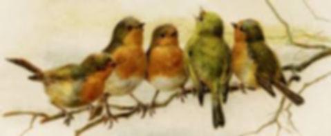 birds vintage.jpg