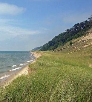 saugatuck-dunes-state.jpg