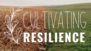 Register for Cultivating Resilience 2021