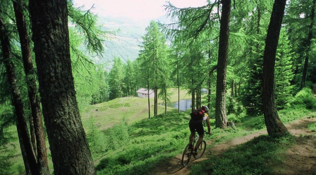 Mountain Bike Routes all Around