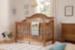 DaVinci Jayden Crib Chestnut.jpg
