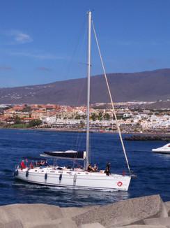 Sortie Cétacées - Puerto Colon.jpg
