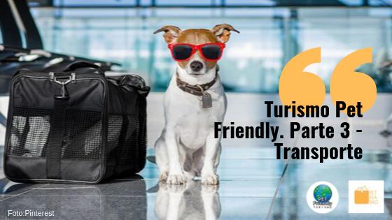 O que preciso para viajar com meu pet? Parte 3.