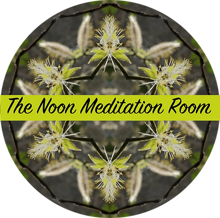 the noon meditation room.png