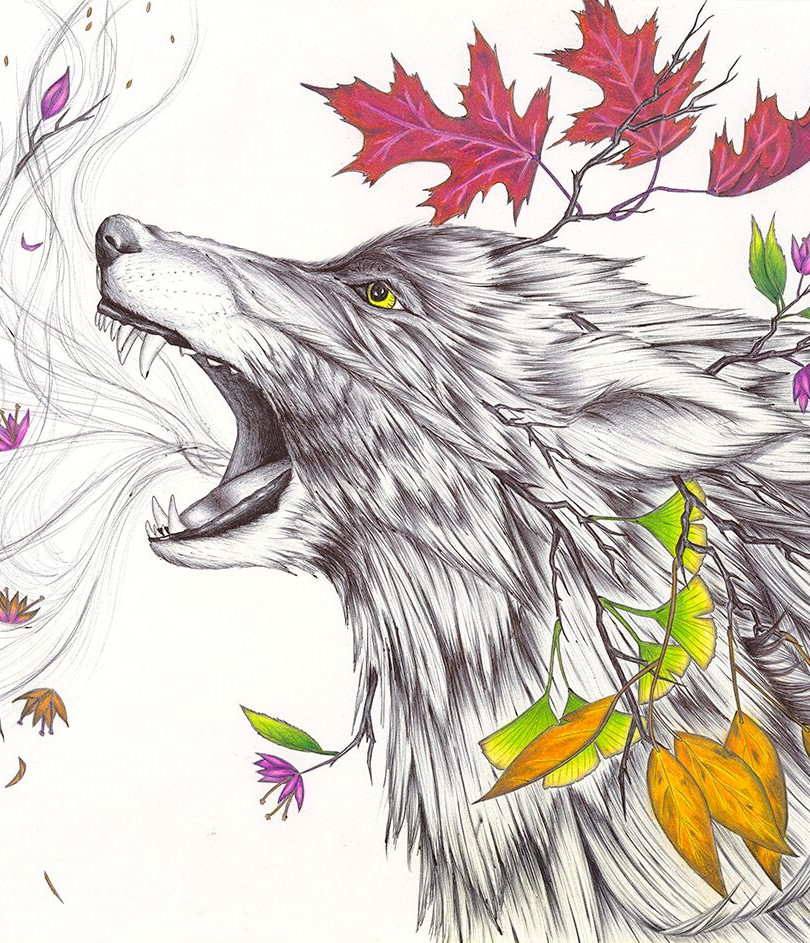 My West Wolf, Thank You