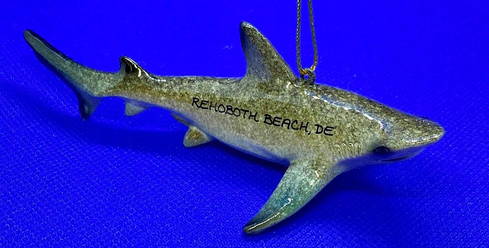 Cape Shore shark