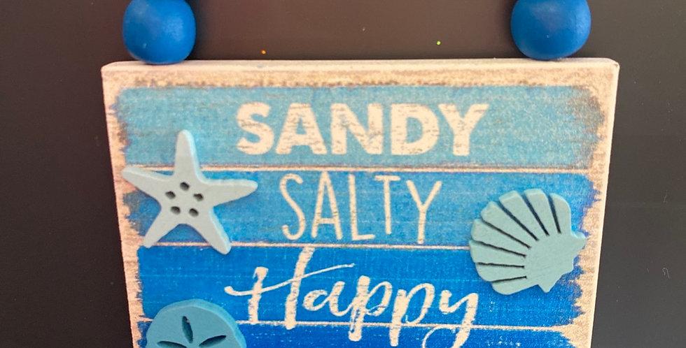 Sandy Salty  Happy