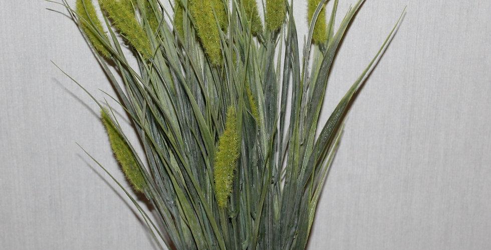 Seidenblume Ziergras mit Dolde Grün