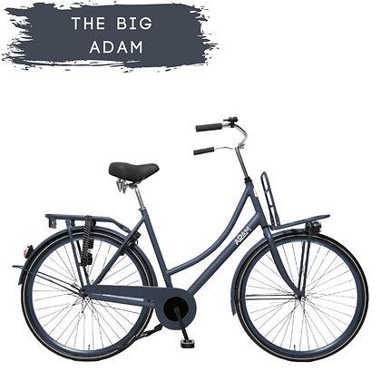 "28"" Adult Bike"