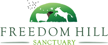 freedomhill-logo.png