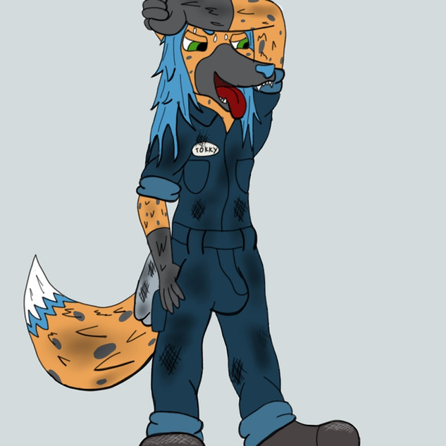 Mechanic Tokky