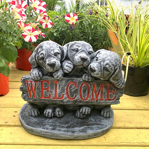 3 Puppy Welcome
