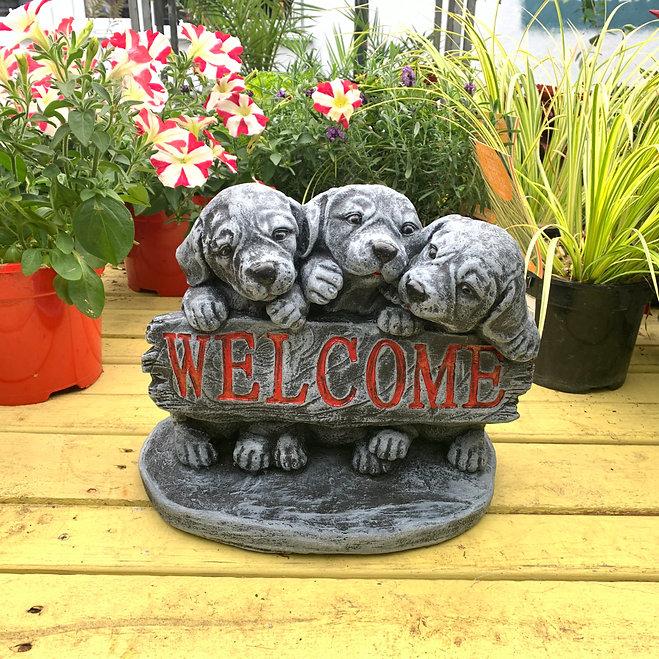 puppy_welcome.jpg